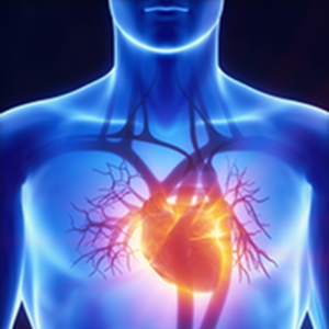 coq10 is good for your heart